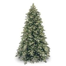 Colorado 75 Green White Spruce Trees Artificial Christmas Tree With 750 Incandescent Clear Lights Stand