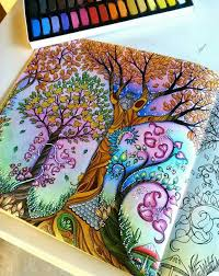 Enchanted Forest Coloring BooksAdult