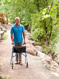 Stander Bed Rail by Senior Home Care Safety Products Stander Mobility Equipment
