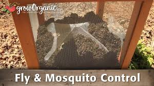 How To Get Rid Of Flies And Mosquitoes - YouTube How To Remove Mosquitoes From Your Backyard Youtube 25 Unique Mosquito Spray Ideas On Pinterest Natural Mosquito Keep Mosquitoes Out Of Your Yard For A Month And Longer With Ways Repel Accidentally Green To Get Rid Of Bugs In Backyard Enjoy Bbq Picture With Gnats In The House Kitchen Plants Organically 9 Steps Pictures Best Sprays Insect Cop 27 Banish From Next Barbecue Roaches Fleas Ants Repelling Plants Plant Citronella Lemongrass