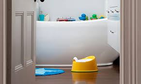 Potty Chairs For Toddlers by How To Use A Potty Training Seat Pull Ups