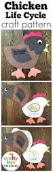 Life Cycle Of A Pumpkin Seed Worksheet by Best 25 Life Cycle Stages Ideas On Pinterest Butterfly Stages
