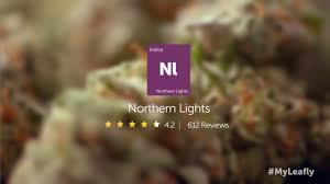 Leafly Strain Spotlight Northern Lights