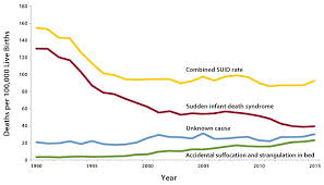 cdc reproductive health sids and suid data and statistics