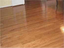 Dog Urine Wood Floors Vinegar by Dog Urine In Wood Floor Choice Image Home Flooring Design