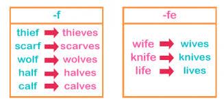 Regular and Irregular Plural Nouns