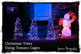 Spiral Christmas Tree Lighted by Christmas Trees Using Tomato Cages Nikitaland