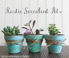 Rustic Succulent Pots VIEW IN GALLERY