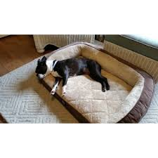 serta orthopedic foam quilted couch pet bed free shipping today