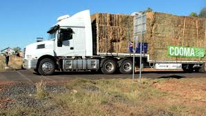 Hay Runners Grounded For Wide Load   Queensland Country Life Rapid Relief Team Hay From Tasmania To Local Farmers Goulburn Post Trucks Wagon Lorry Rig Tractors Hay Straw Photos Youtube Hay Trucks For Hire Willow Creek Ranch Hauling Bales Hi Res Video 85601 Elk161 4563 Morocco Tinerhir Trucks Loaded With Bales Of Stock Wa Convoy Delivers Muchneed Droughtstricken Nsw Convoy Heavily Transporting Over Shipping And Exporting Staheli West Long Haul As Demand Outstrips Supply The Northern Daily Leader Specialized Trailer On Wheels For Transportation Of Custom And Equipment Favorite Texas Trucking
