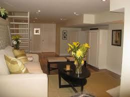 Awesome Basement Room Ideas