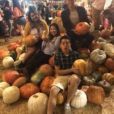 Corona Pumpkin Patch Hours by Frosty U0027s Forest Pumpkin Patch Temp Closed Attraction Farms
