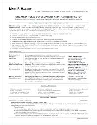 Sample Resume Software Engineer For 2 Years Experience In Net Best Of With Unique