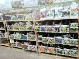 midwest bulb planting the home depot community