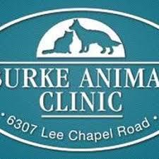 burke animal clinic photos for burke animal clinic yelp