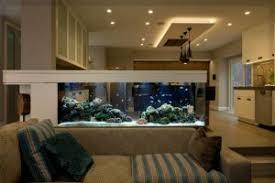 kleines aquarium wohnzimmer aquarium fish plants
