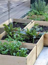 Container Gardening Idea Make A Wine Box Salad Garden