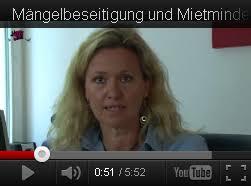 schimmel berliner mietergemeinschaft e v