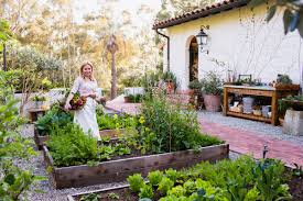 Links We Love: Spring Planting Southern Forager Spring Edible Plants In Middle Tennessee Eating The Wild Your Backyard Fixcom Landscapes Think Blue Marin Gulf Coast Gardening For Weeds And You Can Eat Remodelaholic 25 Garden Ideas Backyards Amazing Uk Links We Love Planting Plant Landscaping Sacramento Landscape Blueberries Raspberriesplants For Your Summer Guide Oakland Berkeley Bay Area Paper Mill Playhouse Yard2kitchen 197 Best Edible Wild Plants Images On Pinterest Survival Skills