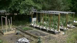 2014 08-Complete Overview Of The Outdoor Hydroponic Garden - YouTube Hydroponic Home Garden Backyard Food Solutionsbackyard Oc Aquaponics Project Admin What Is Learn About Aquaponic Plant Growing Photos Friendly Picture With Amusing Systems Grow 10x The Today Bobsc Ezgro Amazoncom Vertical Gardening Vegetable Tower Indoor Outdoor From Fish To Ftilizer Greenhouse Im In My City Back Yard Yes I Am Satuskaco