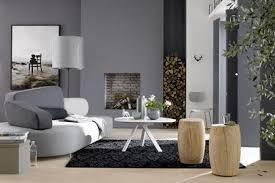 einrichten mit farbe wohnzimmer in kieselstein grau bild