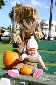 Pumpkin Patch Miami Lakes by Miami Springs City Scape