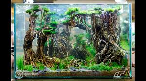 AQUASCAPE CONTEST - APALC 2017 TANK 400 - YouTube 329 Best Aquascape Images On Pinterest Aquarium Ideas Floratic Visiting Paradise At Shah Alam Planted Aquarium Aquascape Things Aquariums Aquascaping Malaysia Diy Pertama Kali Aquascaping October 2010 Of The Month Ikebana Aquascaping World Sumida Aquarium Reloaded Fish Tanks And Designs Awesome A Moss Experiment Its All About Current Low Tech Tank Cuisine Wonderful Small Cubical Styles Planted The Surreal Submarine Amuse