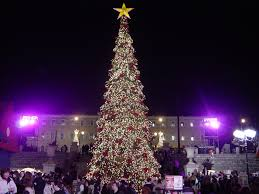 What Is The Best Christmas Tree Food by Christmas Traditions Wikipedia