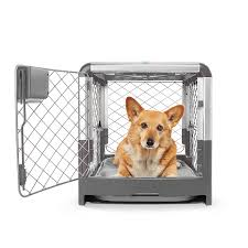 Crate Revolution For Your Dog - Furever Haus Must Have Crate Review Best Cbd Oil For Dogs In 2019 Reviews Of The Top Brands And Grateful Dog Treats Canna Pet King Kanine Coupon Code Review Pets Codes Promo Deals On Offerslovecom Hemppetproducts Instagram Photos Videos Cbd Voor Die Diy Book Marketing Buy Cannabis Products Online Mail Order Dispensarygta April 2018 Package Cannapet Advanced Maxcbd 30 Capsules 10ml Liquid V Dog Coupon Finder Beginners Guide To Health Benefits Couponcausecom Purchase Today Your Chance Win A Free Cbdcannabis Hashtag Twitter