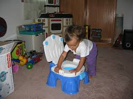 Elmo Potty Seat Cover by Potty Chair Or Potty Seat Don U0027t Skip This