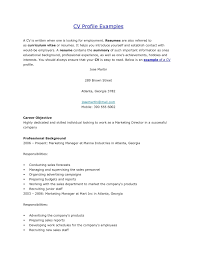 Profile Ideas For Cv Overview Examples A Resume