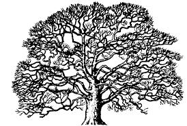oak tree clip art oak tree clip art black white oak tree oak tree