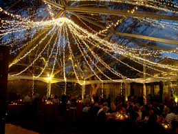 Cute Ideas Outdoor Fairy Lights — All Home Design Ideas Christmas Party Decorations On Pinterest For Organizing A Fun On Budget Homeschool Accsories Fairy Light Ideas Lights Los Angeles Bonfire Bonanza For Backyard Parties Or Weddings Image Of Decor Outside Decorating Patio 8 Alternative Ultimate Experience 100 Triyae Com U003d Beach Themed Outdoor Backyard Wedding Reception Ideas Wedding Fashion Landscape Design Small Pictures Excellent