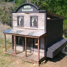 14 Wonderful And Wacky Chicken Coop Ideas The Family Handyman