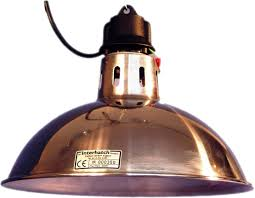 Infratech Infrared Heat Lamp by Lamp Charming Heat Lamp Design Hatco Heat Lamp Heat Lamp Tractor