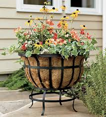 Plow & Hearth Steel Basket Planter AND Coco Liner Just ... Plough And Hearth United Ticket Codes Panda House Polaris Coupon Nume Classic Wand Shark Rotator Professional Lift Away Code Plow Hearth Coupons Promo Codes Deals For August 2019 0 Hot October Trts Dirty Love Coupons Heart Smart Panasonic Home Cinema Deals Uk 1 Click Print Promotional State Inspection Dallas Scojo Discount How To Create Amazon Single Use Coupon Discountsprivate Label Products Comentrios Do Leitor My Fireplace Code