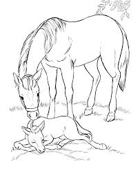 Printable Horse Coloring Pages For Realistic