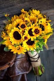 Tudo que mais gosto 100 imagens maravilhosas de flores para