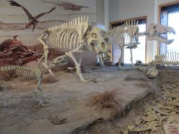 Agate Fossil Beds National Monument by Fossil Hills Trail At Agate Fossil Beds In Nebraska