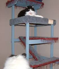 21 free cat furniture plans free plans for cat trees condos