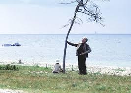 Andrej Tarkovskij Klassiker Классик Classic Classico