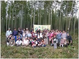 chambre 駻aire 特定非営利活動法人養生の郷 里山を守る池干しと竹林整備