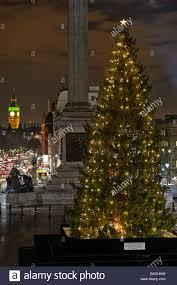Best Christmas Tree Type Uk by Norwegian Christmas Tree Trafalgar Square London England Uk