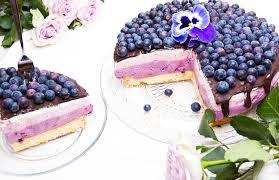 blaubeer himbeer joghurt torte