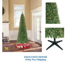 Rite Aid Pre Lit Christmas Trees by 65 Foot Christmas Tree Christmas Lights Decoration