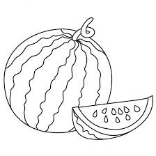 Watermelon clipart line drawing 12