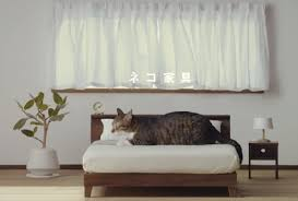 complete set of bedroom living room furniture for cats created by