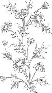 Chic Flowers Coloring Pages