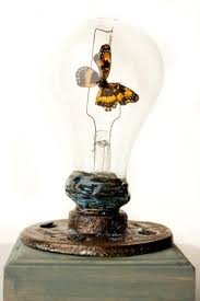 upcycled light bulb with insect the curio cabinet