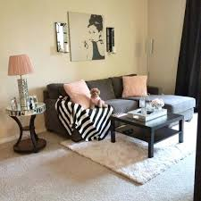 Apartment Decorating Ideas College Delightful Perfect Decor